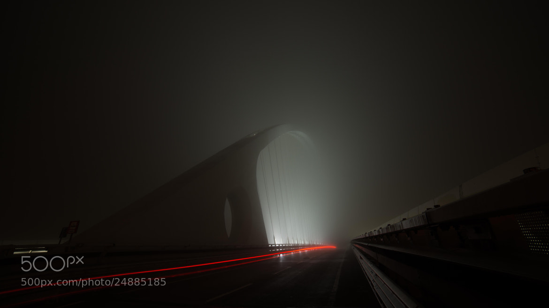 Photograph Calatrava into the Fog by Michele Fornaciari on 500px