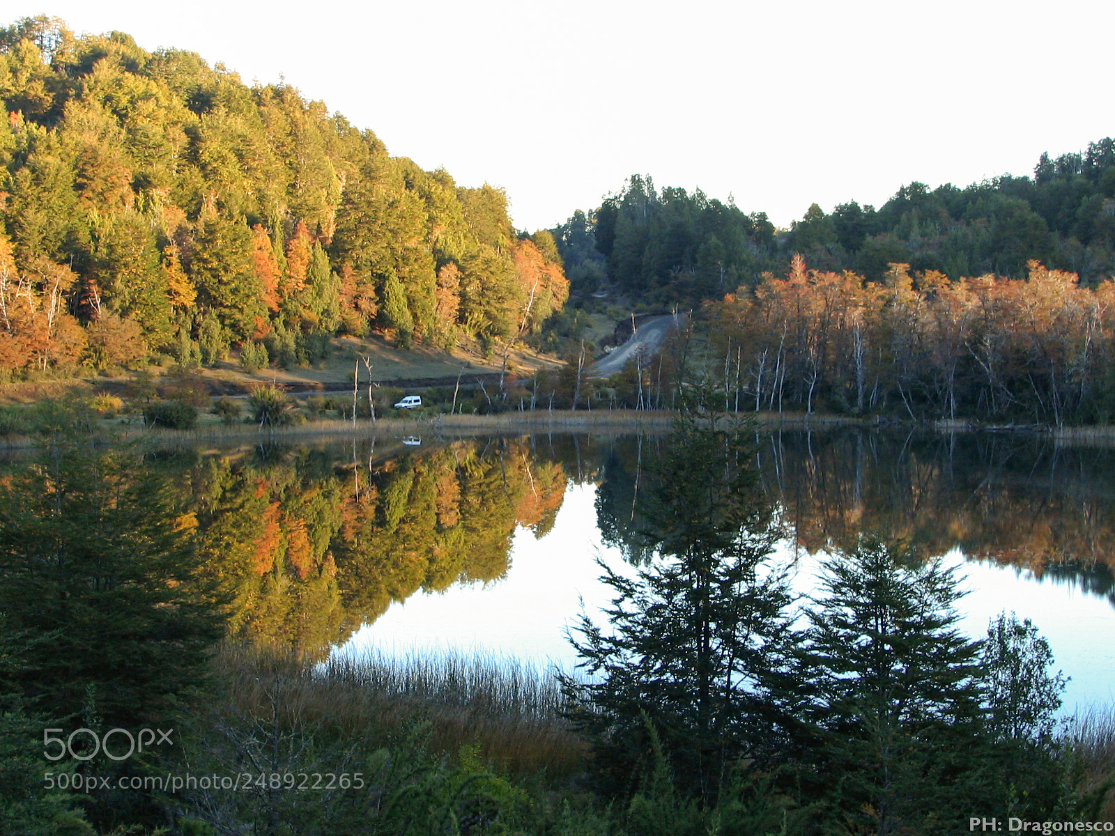 "Canon POWERSHOT S1 IS sample photo. ""Reflejos del lago"" photography"