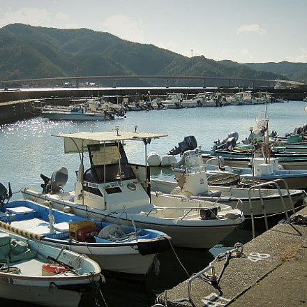 The Shining Sea, Canon IXY DIGITAL 110 IS