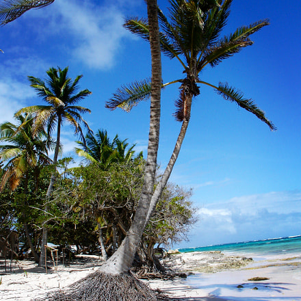 Marie Galante Island, Sony DSC-V3