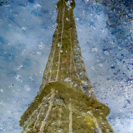 Eiffel Tower refelection, Canon POWERSHOT A560