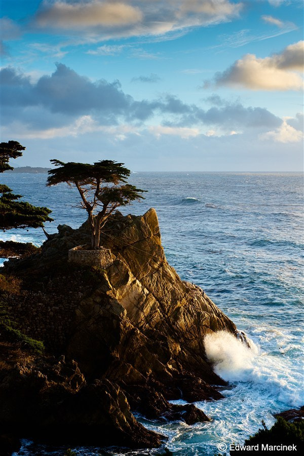 Photograph The Lone Cypress 2 by Edward Marcinek on 500px