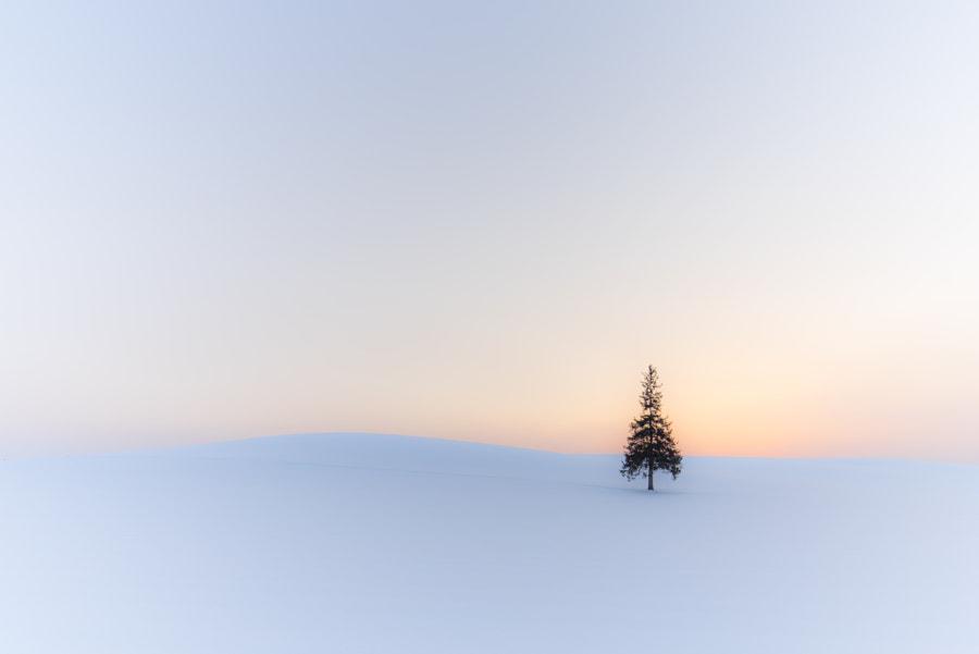 500px.comのKousuke Toyoseさんによる静寂な冬の日