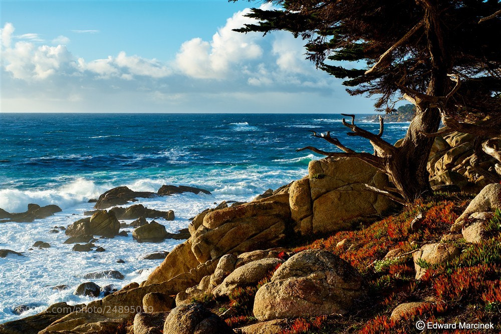 Photograph Sunset at Pescadero Point by Edward Marcinek on 500px