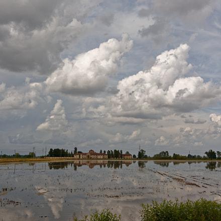 Rice field reflections, Nikon D7100, AF-S Nikkor 24-120mm f/4G ED VR