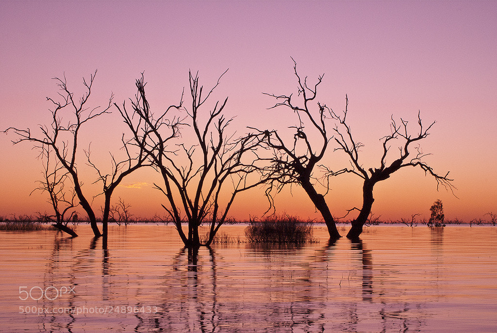 Photograph Sunset @ Lake Menindee NSW Australia by Jong Shin Lee on 500px