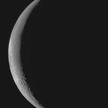Waning Crescent Moon, Nikon E4300