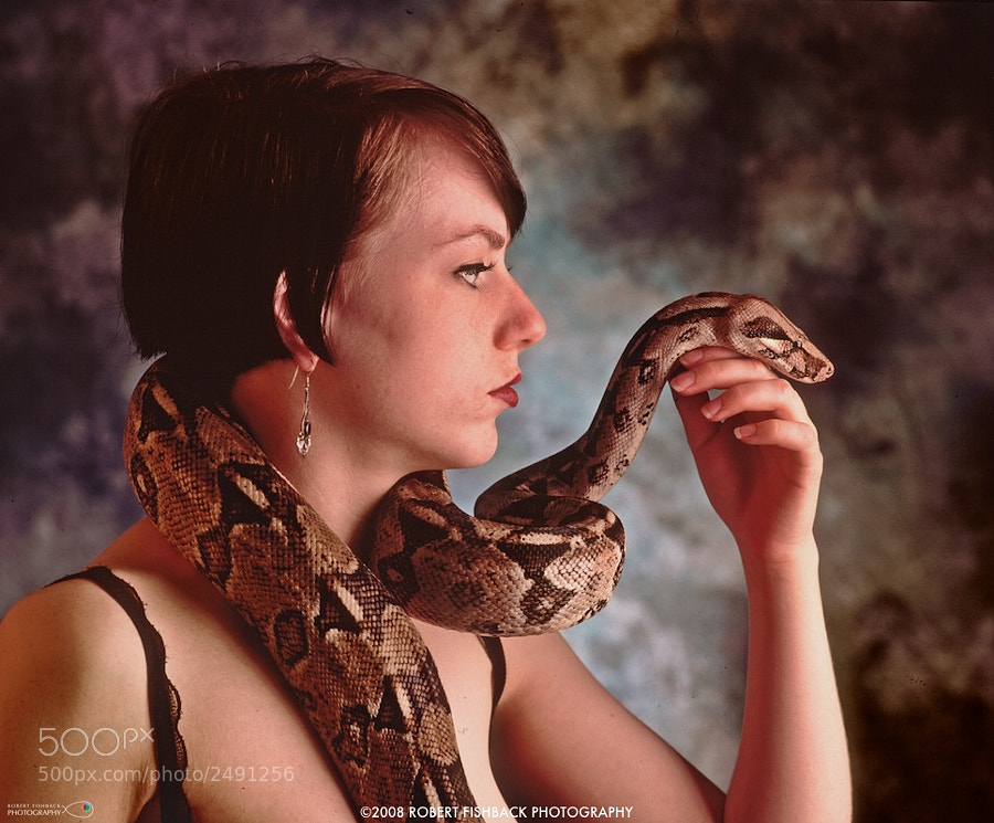 Red Tail Boa with Red head Model