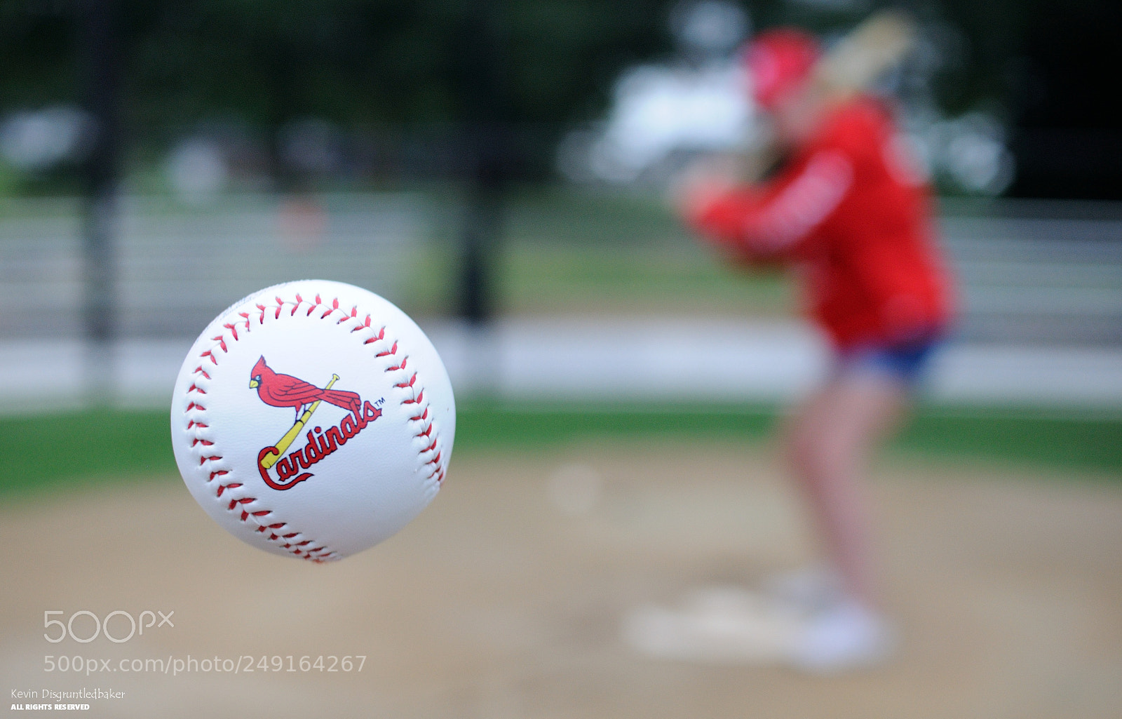 Cardinals Baseball, Nikon D90, Sigma 30mm F1.4 EX DC HSM