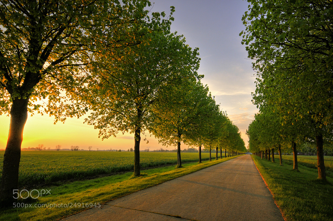 Photograph Straight Home by Daniel Bosma on 500px