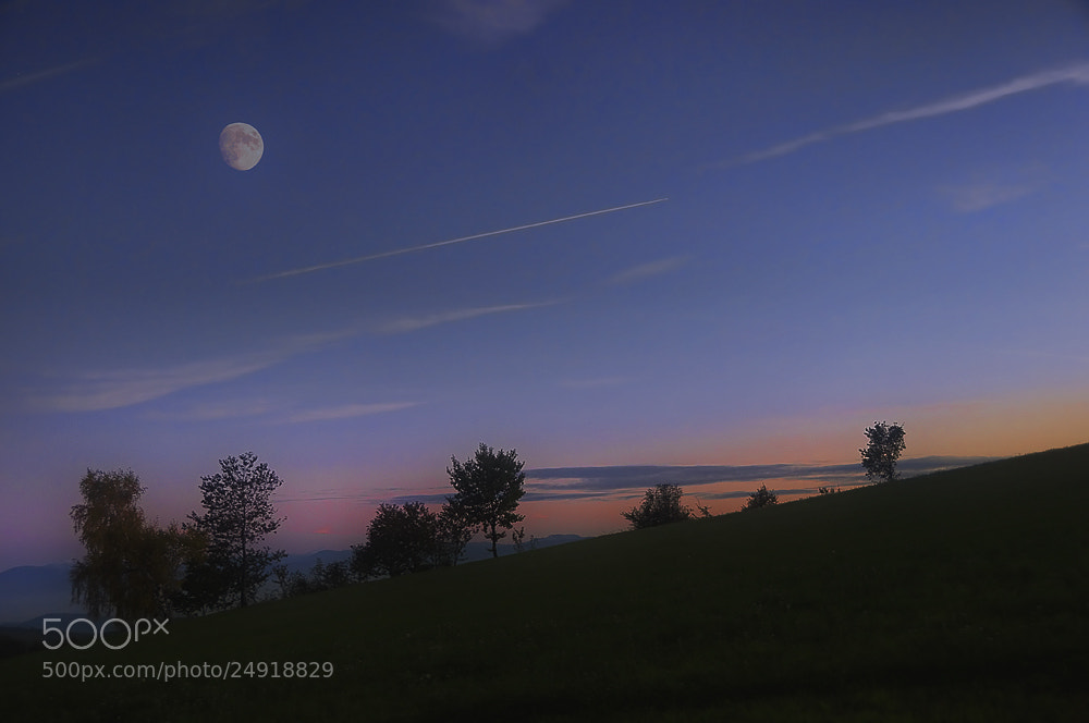 Photograph moon meadow by Rudi Moerkl on 500px