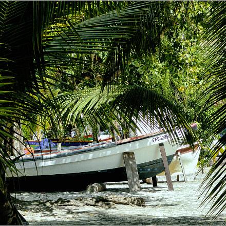 Martinique Anse à l'âne, Sony DSC-H55