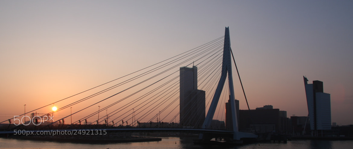 Photograph Rotterdam two bridges at sunrise by Leo Hermans on 500px