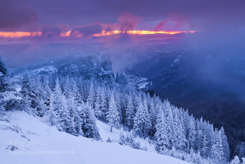 Photograph Frozen sunrise by Lucian Satmarean on 500px