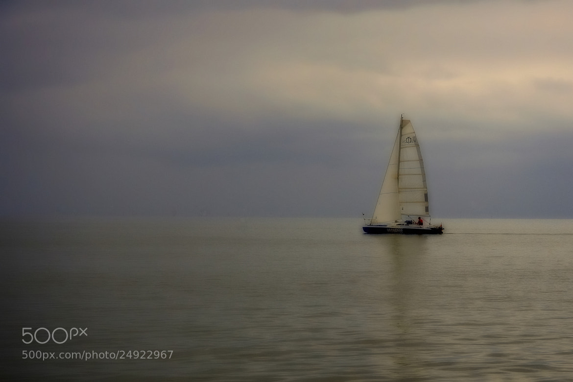 Photograph Sailing by B Timmer on 500px