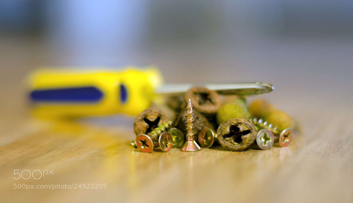 Photograph Gum screws - is that where the idea came from? by Peter Field on 500px