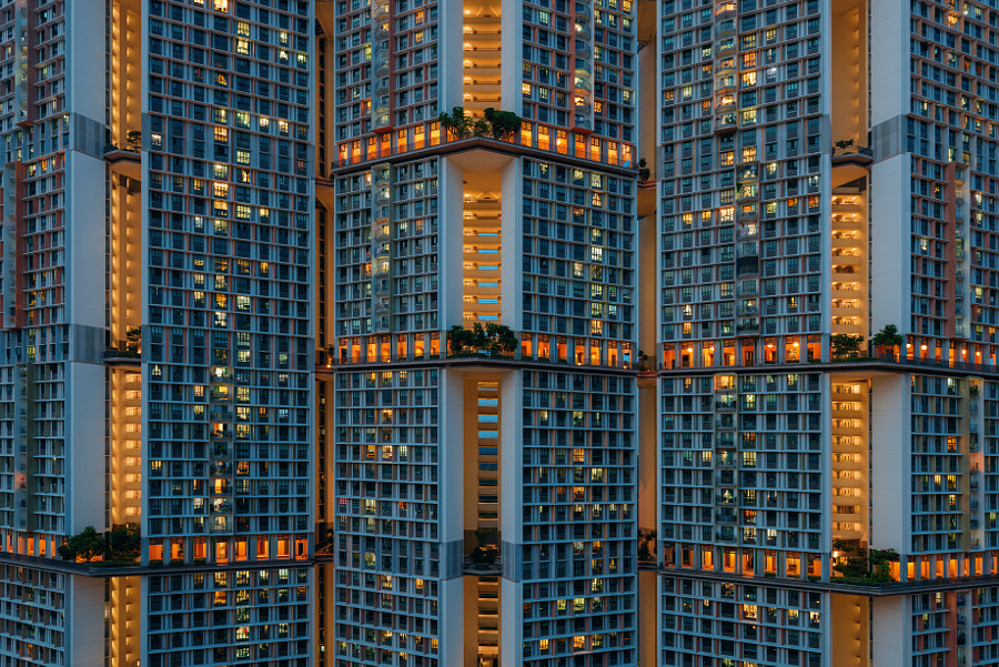 Cells Interlinked by Peter Stewart on 500px.com