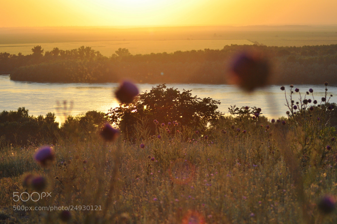 Photograph Danube at Sunset by Claudia Gadea on 500px