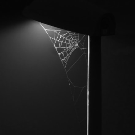 Web in the dark, Sony DSC-HX9V