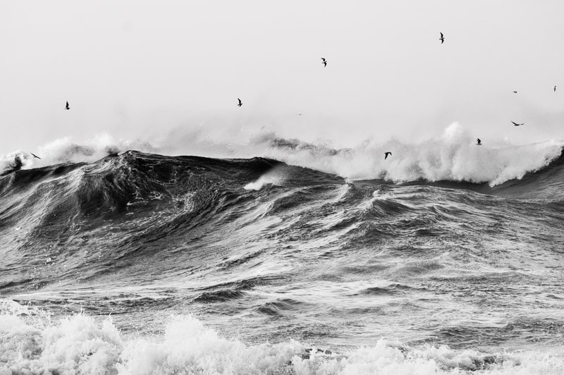 Photograph Flying over the waves by Josep Girona on 500px
