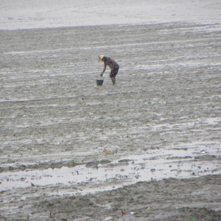 The Fisherman, Nikon COOLPIX P90