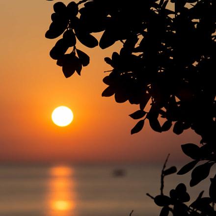 Orange mornings (Acireale, Sicilia)