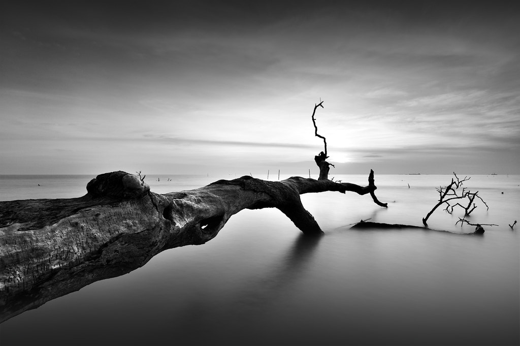 Photograph When The Time Comes by Azman Abdullah on 500px
