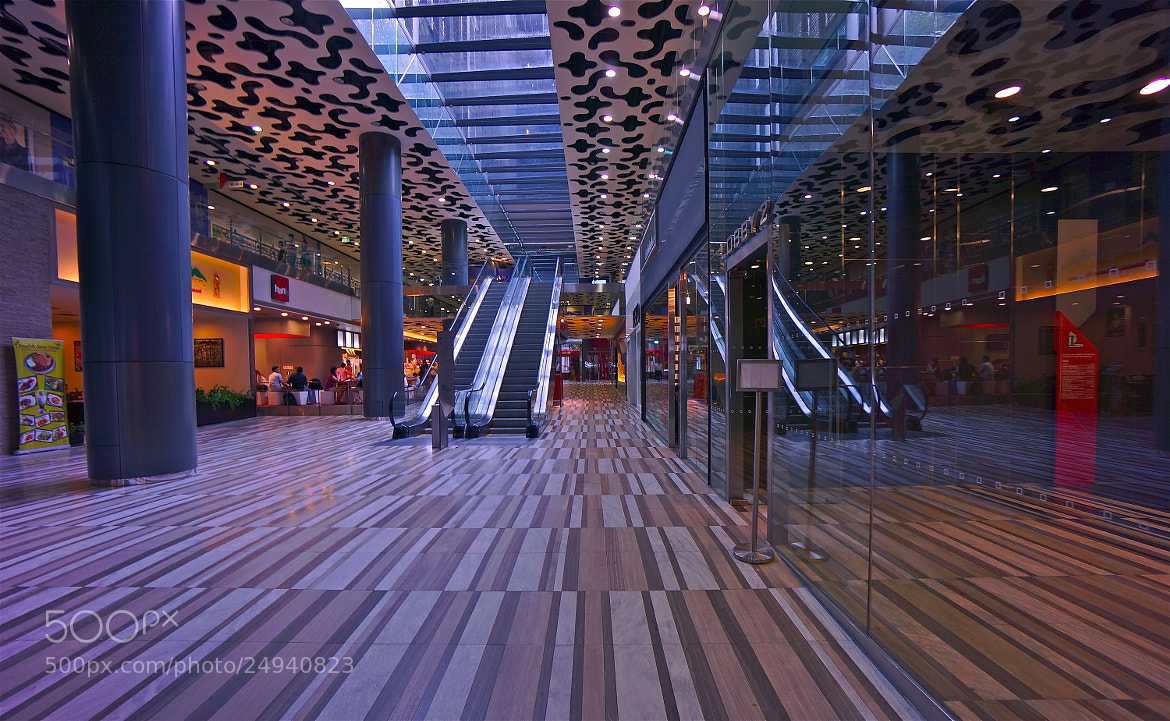 Photograph The Mall by Sim  Kim Seong on 500px