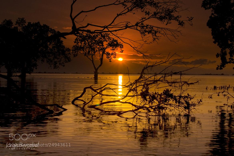 Photograph Sunrise by Ange Jorge Bersabal on 500px