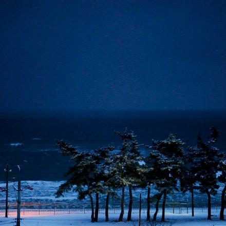 Untitled, Nikon D200, AF-S DX Zoom-Nikkor 17-55mm f/2.8G IF-ED