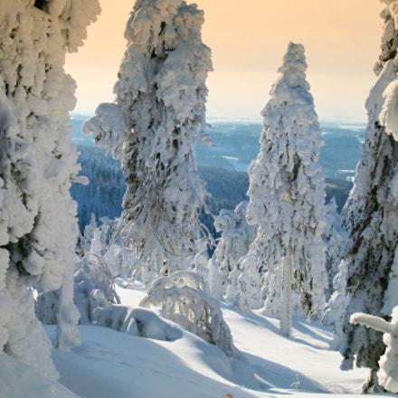 winter on Orlicke hory, Panasonic DMC-FZ100