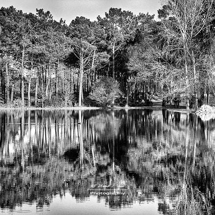 Crossing the Lake, Sony DSC-P100