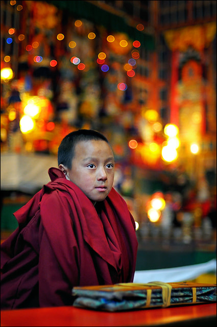 Photograph The Little Monk by saptak ganguly on 500px