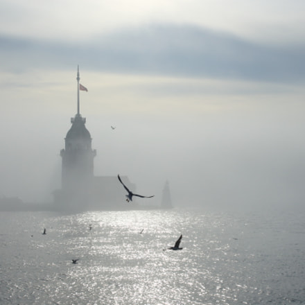 Foggy Istanbul 03, Canon EOS 700D, Tamron AF 17-50mm f/2.8 Di-II LD Aspherical