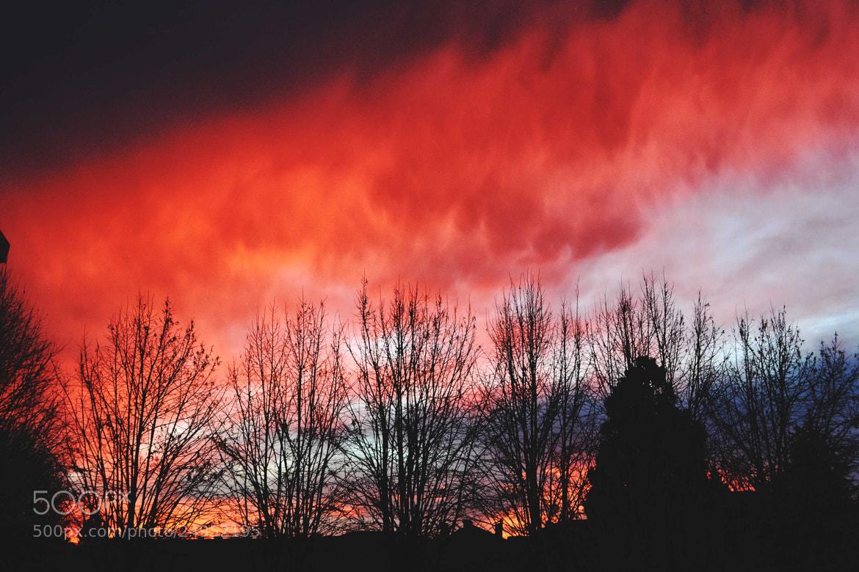 Photograph sunrise by Juliet  on 500px