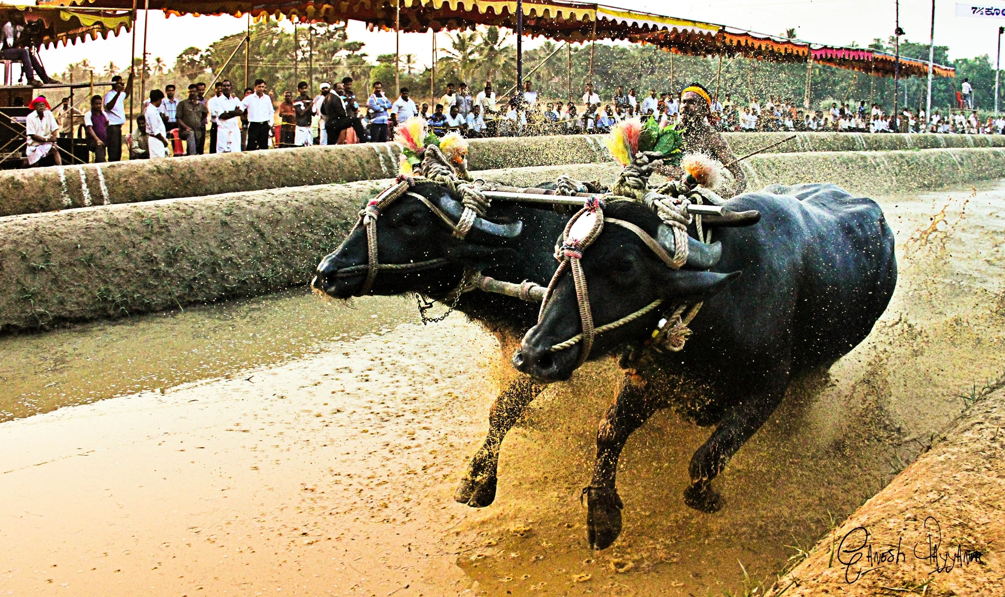 Photograph Reaching the finish line by Ganesh Payyanur on 500px
