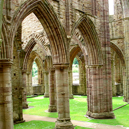 Tintern Abbey in the, Sony DSC-W50