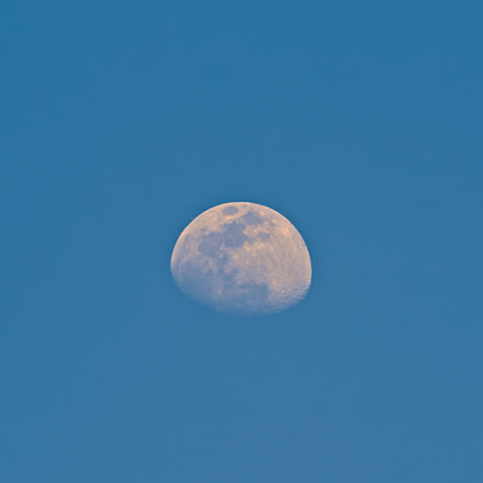 Daylight Moon, Canon EOS REBEL T6, Canon EF 75-300mm f/4-5.6