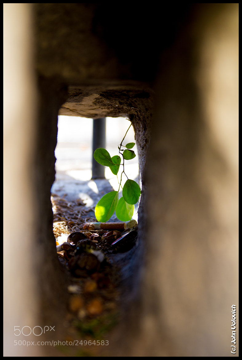 Photograph Light at the end of the tunnel by John Volovich on 500px