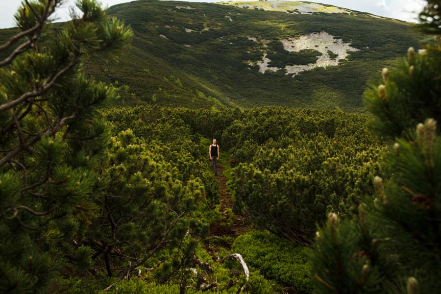 In the bushes, автор — Wolodymyr Black на 500px.com
