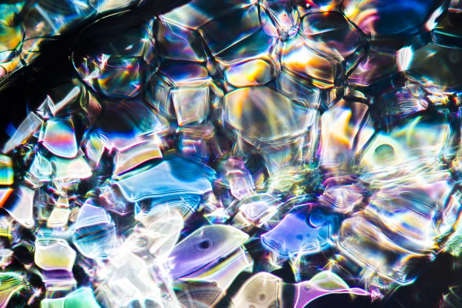 500px.comのKousuke Toyoseさんによる自然界のステンドグラス