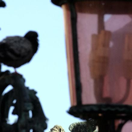 lampione di Venezia, Fujifilm FinePix S200EXR