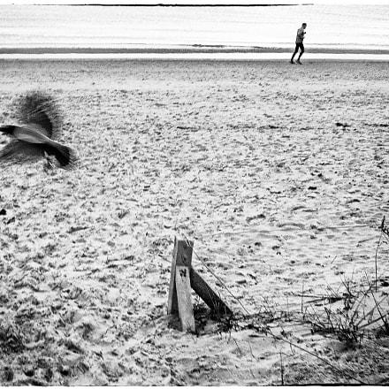 Baltic Sea # 2, Nikon COOLPIX P300