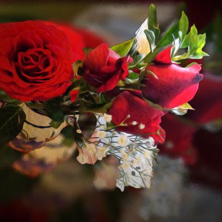 rosas 24, Sony DSC-H90