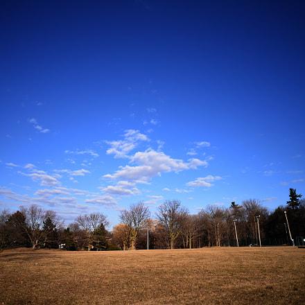 open field, Nikon D750, AF Nikkor 20mm f/2.8