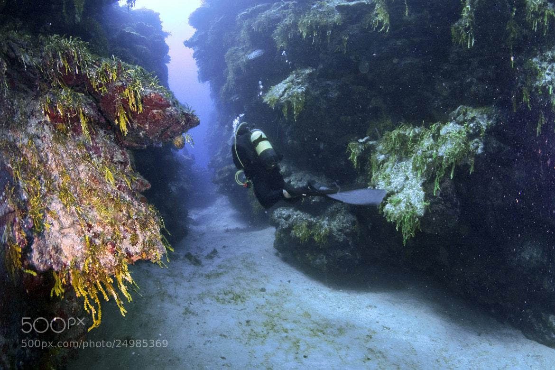 Photograph Playa Giron by Sergiy Glushchenko on 500px