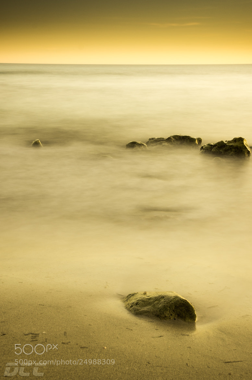 Photograph Stillnes by David Cardona on 500px