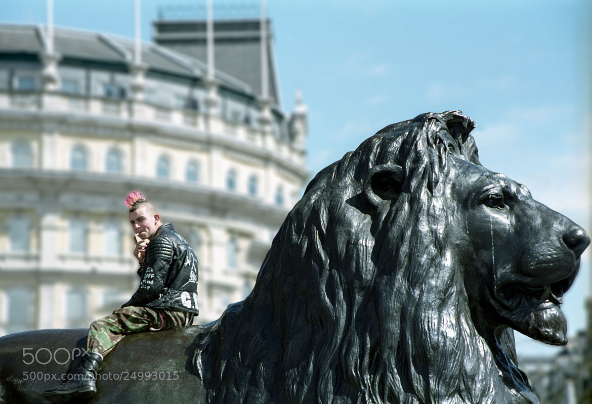 Photograph Punk on Lion by James Goldsmith on 500px