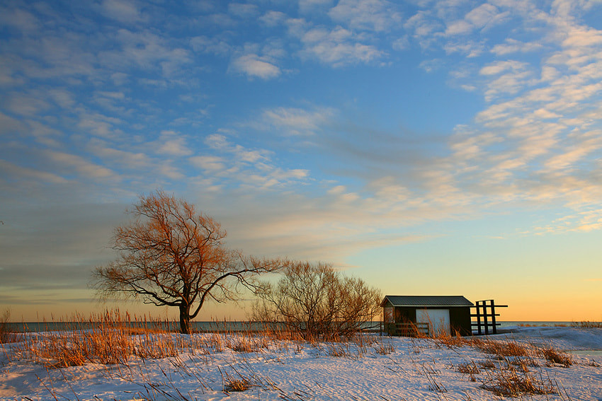 Photograph Winter Darlington by donald luo on 500px