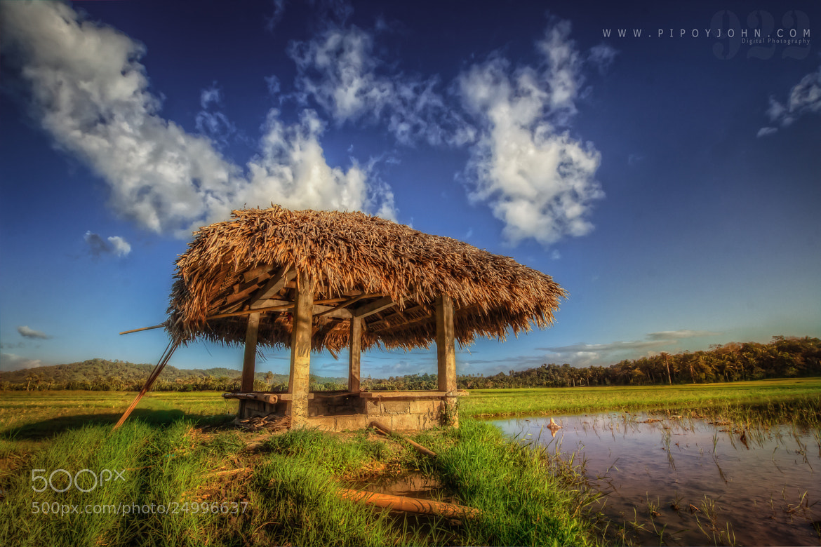 Photograph Munting Kubo sa Palayan (RiceField in the Philippines)HDR Photography By: Pipoyjohn  by Pipoy John on 500px